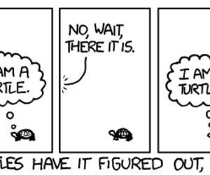 turtle, xkcd, and nipalle image