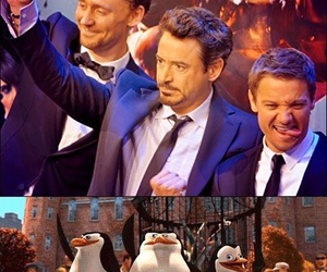 funny, madagascar, and Avengers image