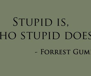 stupid, forrest gump, and quote image