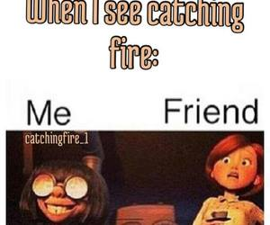 funny, true, and hunger games image