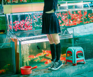 aesthetic, girl, and fish image
