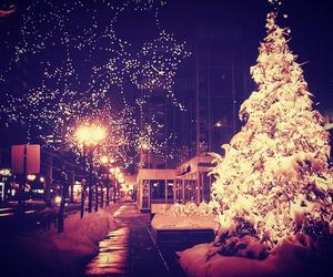 aww, beautiful, and christmas image