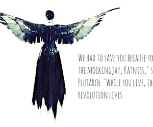 quote, the hunger games, and catching fire image