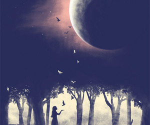 moon, night, and bird image