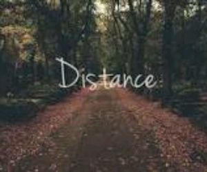 distance and trees image
