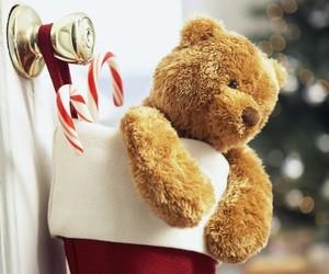 christmas, bear, and winter image
