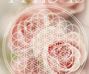 bmth, flower, and I Love You image