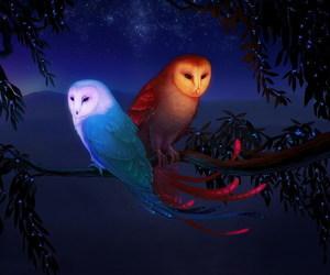 owl, night, and art image