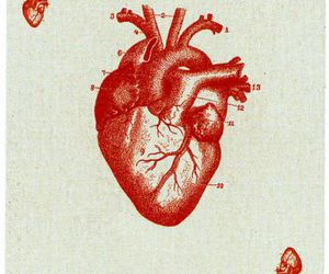 heart, card, and ace image