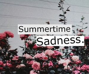 summertime sadness, lana del rey, and flowers image