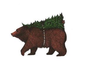 bear, tree, and drawing image
