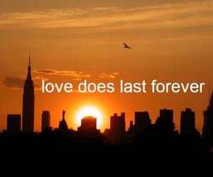 city, sunset, and love image