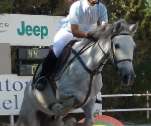 competition, jumping, and rider image