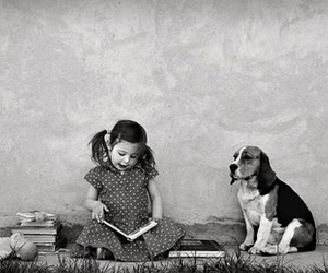 black and white, dog, and book image