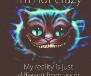 alice in wonderland, cat, and crazy image
