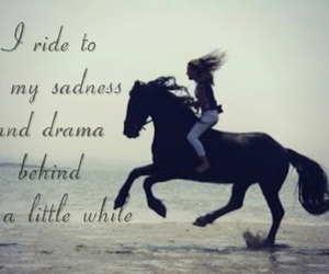 29 Images About Horse Quotes On We Heart It See More About Horse