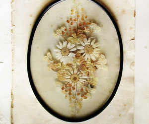 dried flowers, oval, and rustic image