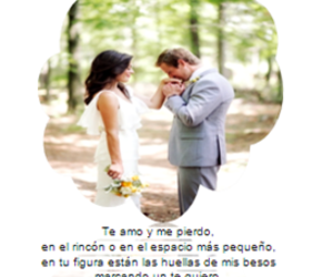 couple, forest, and casados image