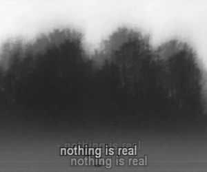 nothing, real, and quotes image