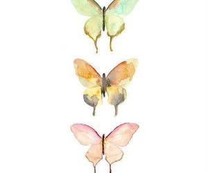 butterflies, cool, and vintage image
