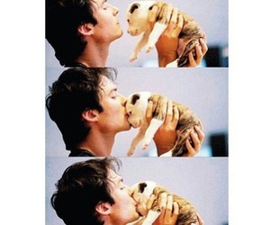 cute, dog, and ian somerhalder image