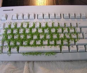 green, keyboard, and plants image