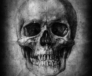 skull and art image