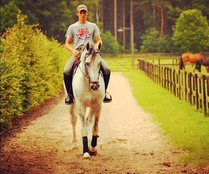 equestrian, handsome, and horse image