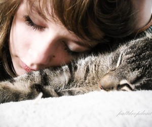 cat, girl, and sweet image