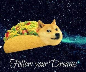 tacos, dreams, and dog image
