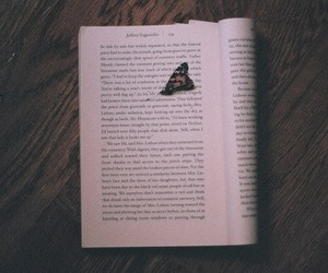 book, butterfly, and vintage image