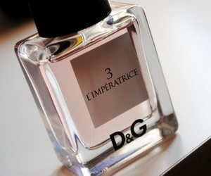 D&G, pink, and perfum image