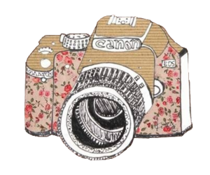 camera, canon, and flowers image