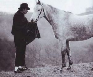 michael jackson, horse, and jackson image