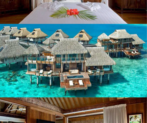 bora bora, Dream, and hilton image