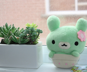 green, pot, and cute image