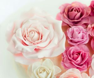 girly, romantic, and roses image