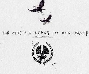 books, movie, and the hunger games image