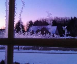 christmas, dawn, and snow image