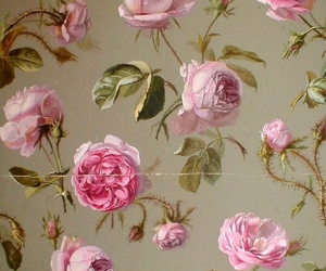 rose, background, and vintage image