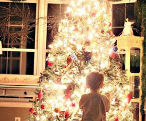 christmas, christmas tree, and lights image