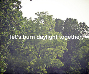 burn, daylight, and green image