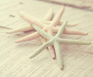 starfish, pastel, and beach image