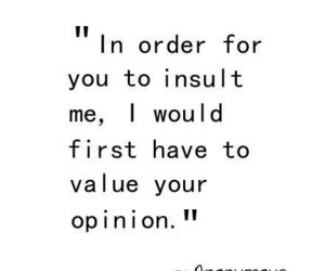 quotes, opinion, and insult image