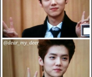 exo, exo-m, and luhan image