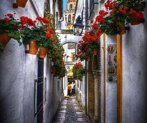andalucia, beautiful, and city image