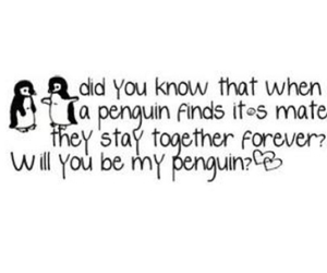penguin, love, and cute image