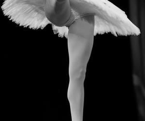 ballerina, dance, and tutu image