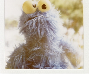 cookie monster and polaroid image