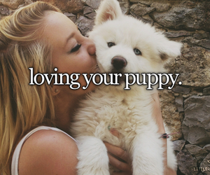 puppy, love, and pet image